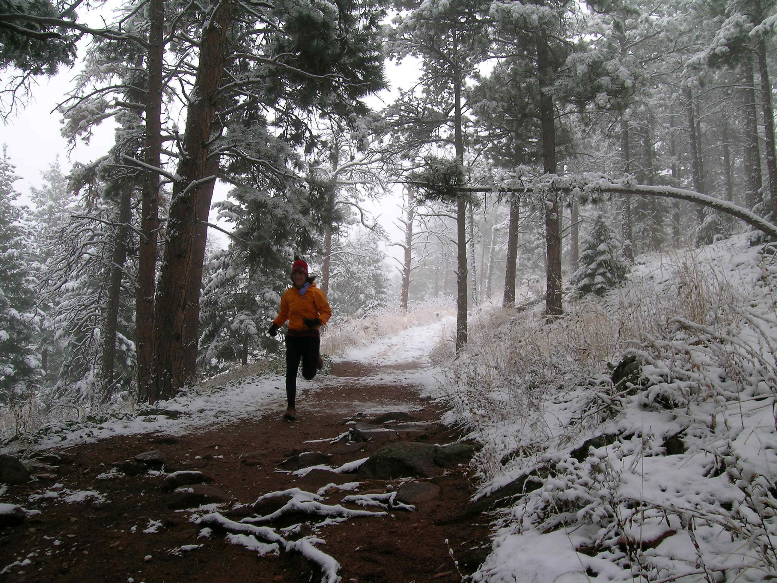 Holly Trail Running